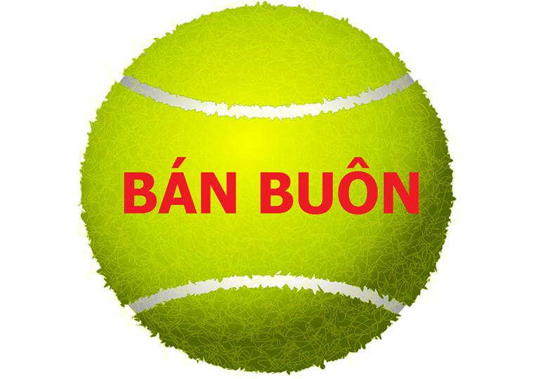 Bóng Tennis Dunlop Championship Extra Duty – Hộp 4 quả