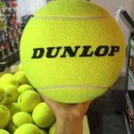Bóng Tennis Dunlop Championship Năm 2020 – Hộp 3 quả