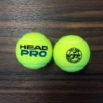 Thùng Bóng Tennis Head Pro Năm 2019 – Hộp 3 quả