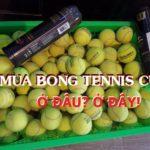Combo 30 Quả Bóng Tennis Cũ (Luyện Tập)